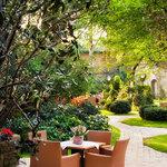 wonderful shaded garden