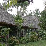 garden view huts