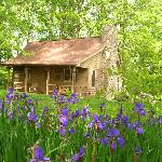 Blue Moss Cabin at Fire Mountain in Highlands