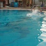 la purete de l'eau de la piscine!!