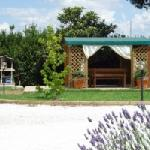 giardino con gazebo e barbecue