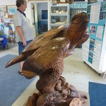 Hawaiian Islands Humpback Whale Sanctuary Visitor Center
