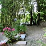 Amazing Hidden Garden