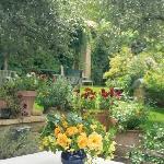 Jardines románticos y perfumados con más de 300 variedades de rosas