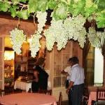 Parra y racimo de uvas del Jardín Bona Taula