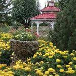 The Gardens are in bloom!