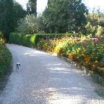 passeggiata in villa tra i fiori