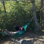 Relaxing in the hammock at campsite C.