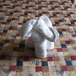 Towel Art Elephant