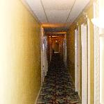 hotel hallway, photo cannot capture the smell