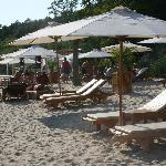 Exclusive Robinson beach August 2011
