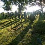 the cemetery in the morning light
