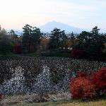 Mt Iwaki in background (need to pay to get access to this area)