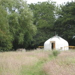 Barn Owl Yurt in the sunshine