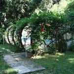 La piscine, enfouie dans la végétation