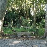 Le jardin bohème et ses arbres centenaires