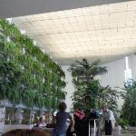 Reception / Botanical Garden