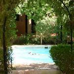 zicht op zwembad