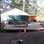 10 person Yurt with large deck