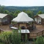 Safari Lodge - Five Fabulous Choices