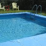 Clean clear pool