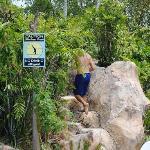 Climbing waterfall to get to water slide