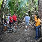 Bikers on trail with guides