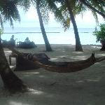 hammocks in front of sails bar