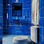 Red PInn Blue Bathroom