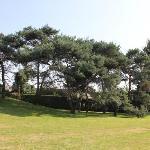 Une partie du beau parc arboisé