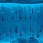 Inside the vodka ice room