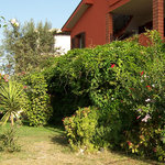 Arba at Ashar Bed and Breakfast Foto