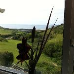 View from the 'Lundy' room