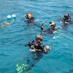Relax Divers