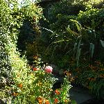 the Ballygally Hotel garden