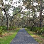 View of the Paved Trail