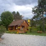 Cabin available ( sleeps 5 )