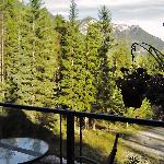 View from the deck adjacent to the dining room.  We actually saw a bear amble down the road.