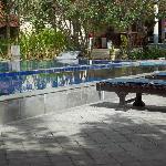 Nice pool...needs new loungers