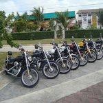 Harley Davidson tour Cozumel Mexico