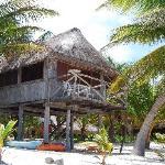 Tree House Cabana
