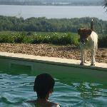 Der Schlosshund und unser Sohn haben gemeinsam Spaß am Pool