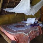 bed in 1 room beach bungalow