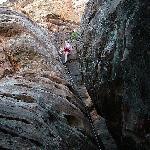 zion canyon climbing