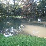 La piscine !!!