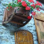 fiori di benvenuto
