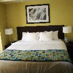 SpringHill Suites Modesto - 1 King bed suite