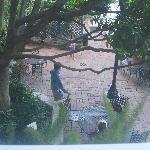 Hotel Metropole rm 209 courtyard view