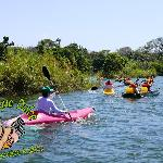 Kayaks in Asese Bay