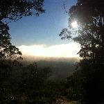 Blue Mountains Mist